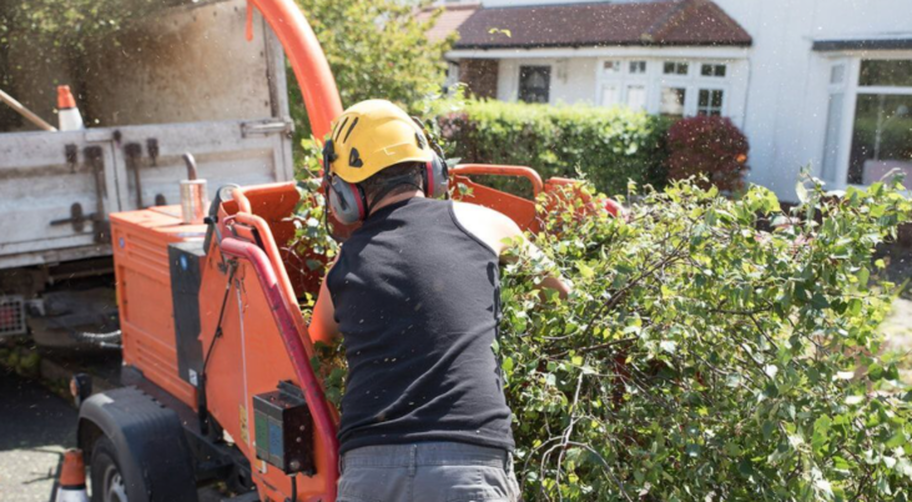 Expert from Overland Park Tree Pros in Overland Park, KS using the wood chipper.